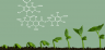 Sample Grow