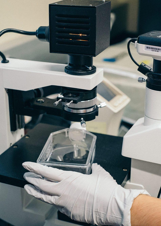 laboratory testing of fulvic minerals