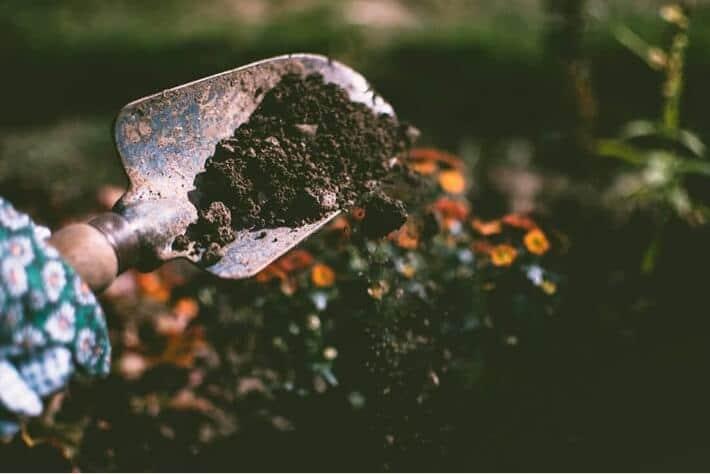 Fulvic acid in gardening